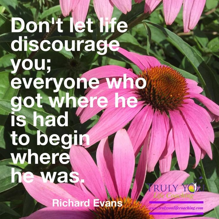 """Picture #quotes """"Don't let life discourage you; everyone who got where he is had to begin where he was."""" Richard Evans"""