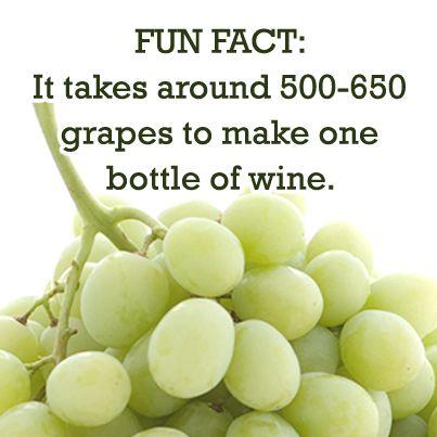 Fun Wine Night Fact! | #WineNight http://www.brioitalian.com/bar_brioso.html?view=full