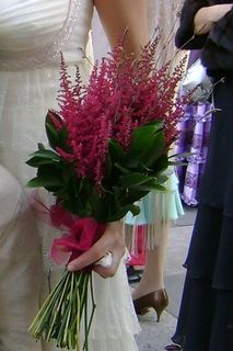 Una planta de otoño perfecta para una boda de estilo rústico es el Brezo.
