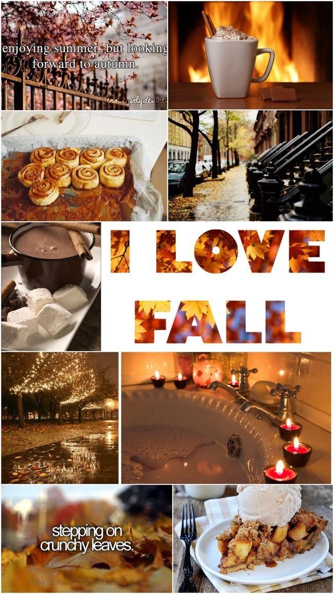 Enjoying summer, but looking forward to autumn! I love Fall