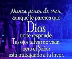 Nunca pares de orar, aunque te parezca que Dios no te responde. Tus ojos tal vez no vean, pero el Señor está trabajando a tu favor.
