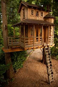 Nelson Treehouse and Supply