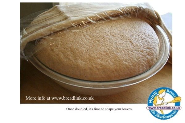 Breadlink Sprouted Flours and Raw food products