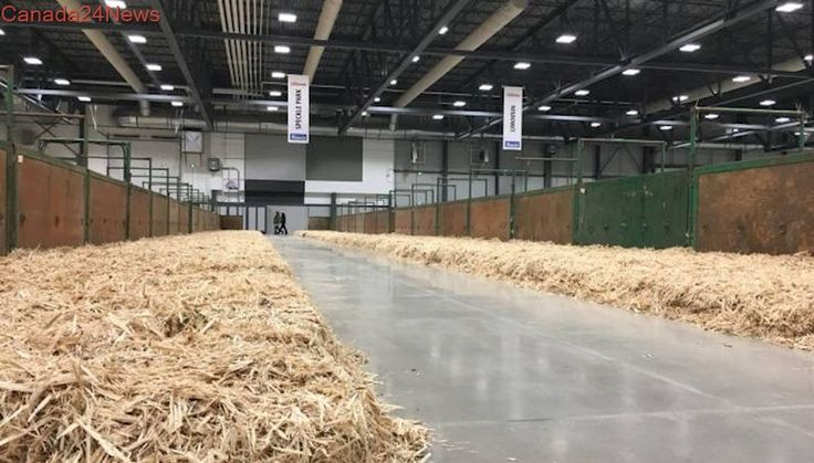 International Trade Centre opens ahead of Canadian Western Agribition