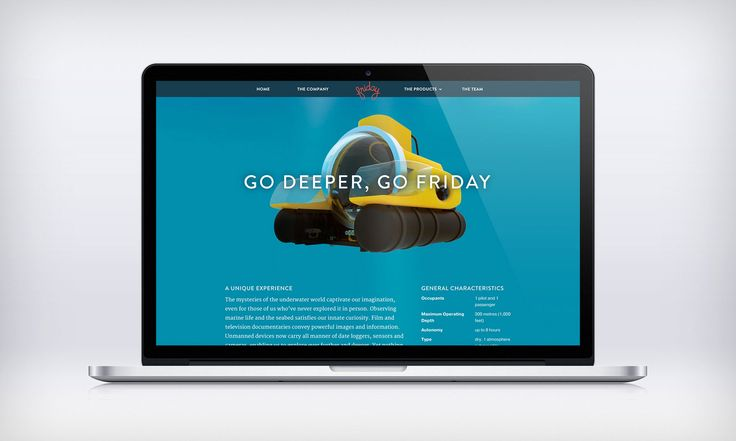 Visual Identity and collateral design for Friday.  Friday is a start up company dedicated to creating technologically advanced nautical and water related leisure devices and equipment, including a line of floating houses and personal submarines.