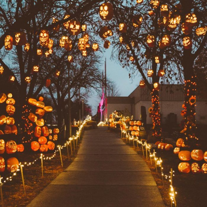 Pumpkin Halloween Decor Ideas for the Thriller Night - Hike n Dip - - Pumpkin is a major part of Halloween and Fall decoration. Here you will find some of the classiest and most fabulous Pumpkin Halloween Decor Ideas. Halloween Tags, Fröhliches Halloween, Adornos Halloween, Holidays Halloween, Halloween Pumpkins, Halloween Festival, Halloween Tree Decorations, Halloween Yard Ideas, Halloween Quotes
