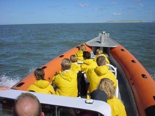 Waddeneventures in het hoogseizoen organiseren wij dagelijks tochten naar de zeehonden colonies, oa de Richel en de Engelse Hoek .