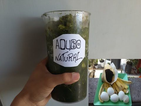 O Melhor Fertilizante Natural Para as Plantas!!! - YouTube