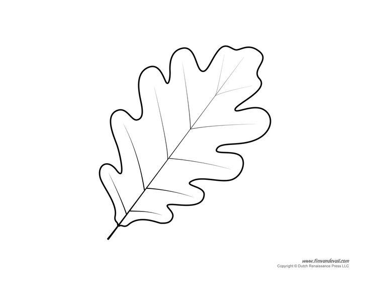 Oak leaf pattern. A high resolution version of the leaf ...