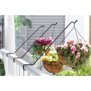 Hanging plants off the balcony for our balcony pinterest - Hanging plants in balcony ...