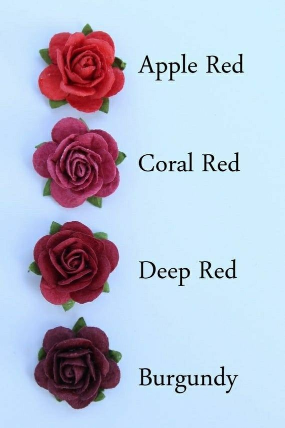 Pin By Grace Khan On English World In 2020 Blue Rose Tattoos Color Psychology Red Rose Flower