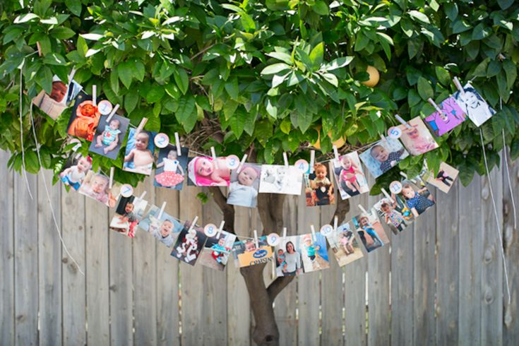 first birthday picture display