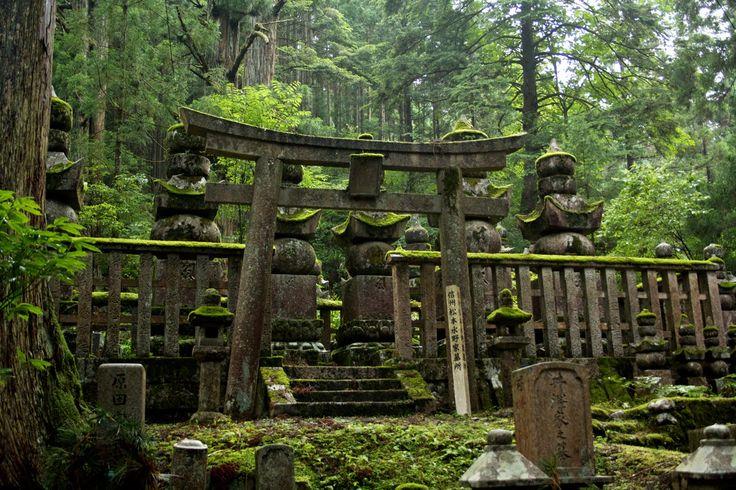 #koyasan #cemetery #temple #peaceful #shirakawago #japan #Japanese #rural