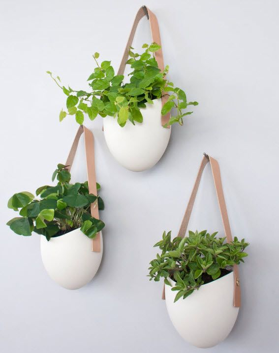Perfect Wall Planter (http://blog.hgtv.com/design/2013/10/01/daily-delight-perfect-wall-planter/?soc=pinterest)