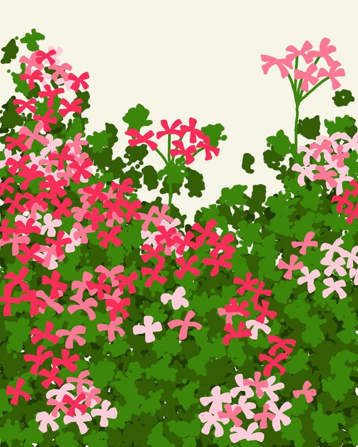 Geraniums - Jorey Hurley, via Etsy. #Floral #botanical #art