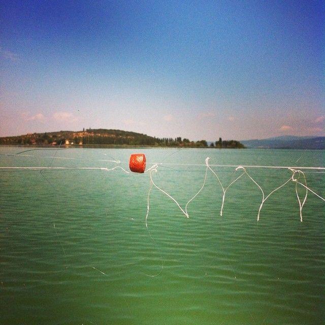 Pesca al post in rete #AlTrasimeno foto di @ paraihc