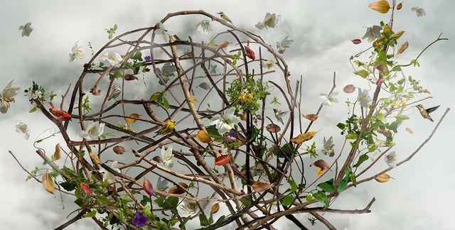 Ysabel LeMay, 'Wonderment,' 2009, Jackson Fine Art