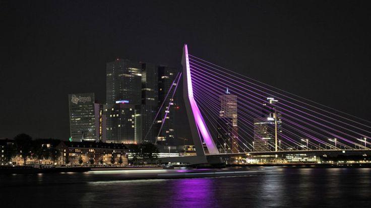 Rotterdam feliciteert Tom Dumoulin met roze Hofpleinfontein en Erasmusbrug - RTV Rijnmond