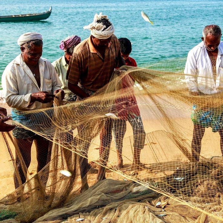 Fish learning to fly to be free of net. Kollam  #fishnets #fish #free #freedom #fishing #fisherman #india #everydayindia #kollam #sea #shoreline #shore #beach #boat #boats #instashots #instagood #instagram #canonphoto #canon #canon6d #photographyeveryday #photowall #photographyeveryday #photography #photographer #captures #capture