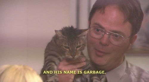 A master of naming pets. | 33 Dwight Schrute Jokes That Still Make You Laugh Every Time