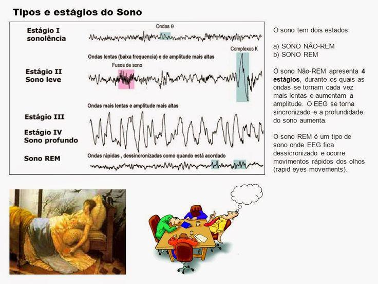 BAIXA ALTURA: EFEITOS PRIVAÇÃO DE SONO SOBRE FUNÇÃO EIXO HIPOTÁLAMO-HIPÓFISE-ADRENAL E CRESCER. : BAIXA ESTATURA INFANTIL E JUVENIL: EMBORA VÁRIOS E...