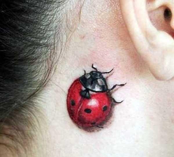 ladybird_010