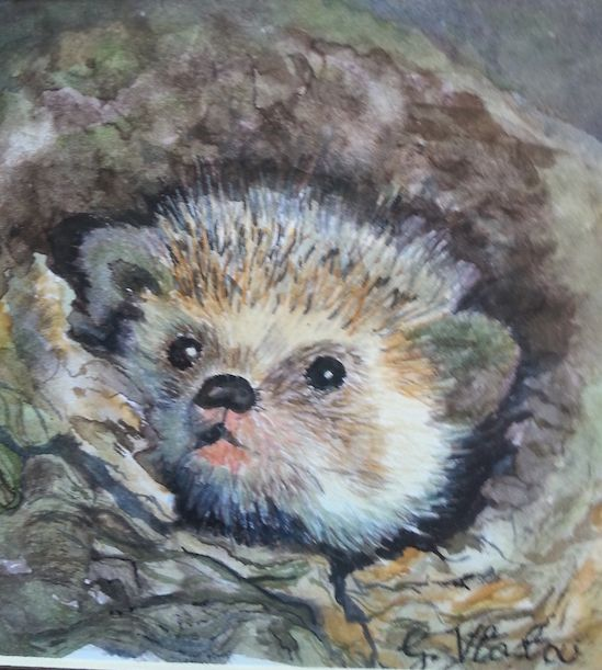 Hedgehog in watercolour by Gayner Vlastou