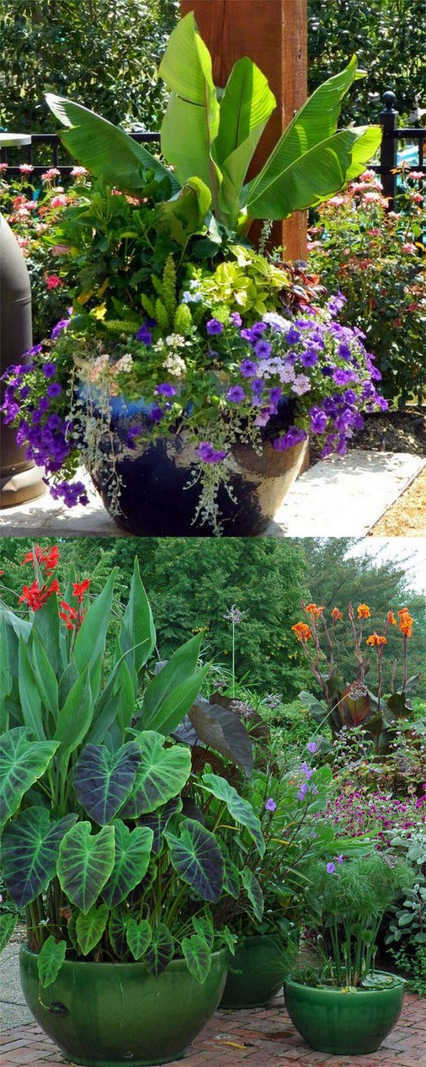 Container Garden Design Ideas container garden design ideas ingenious inspiration ideas 24 with these 11 important tips you can create 24 Stunning Container Garden Planting Designs Page 2 Of 3