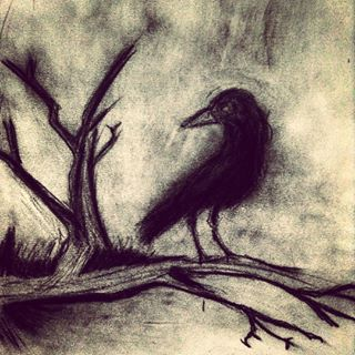 crow drawing - Google-haku