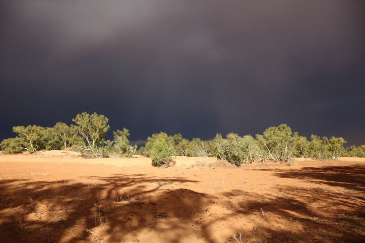 f/8 1/125 ISO 100 24mm Grey skies after one of the worst dust storms I've been lucky enough to have been a victim of!