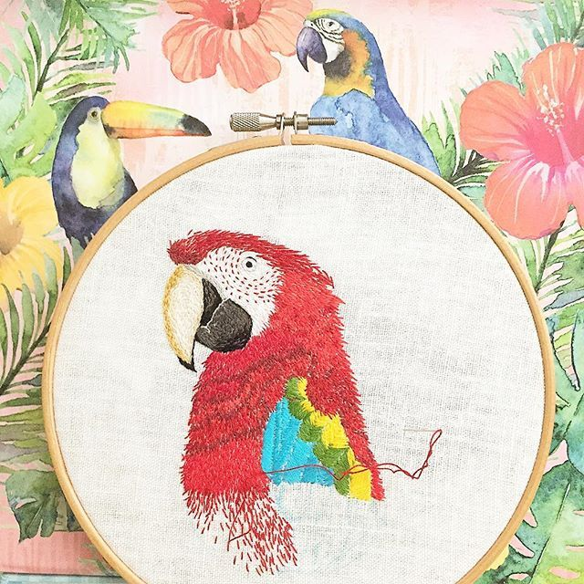 Scarlet macaw hoop embroidery(in progress) #scarletmacaw #bird #birdlover #birdsofinstagram #tropical #tropicalbird #embroidery #embroideryart #hoopembroidery #embroideryartist #embroideryhoop #handmade #dmc #macaw #art #embroideryartist #cute #pretty #pet handembroidery #beautifulbirds #handembroidery #刺繍#トロピカル #パロット #鳥 #ペット #かわいいです