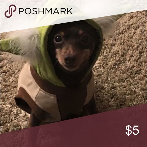 Yoda dog costume   Yoda dog costume  Costumes Halloween