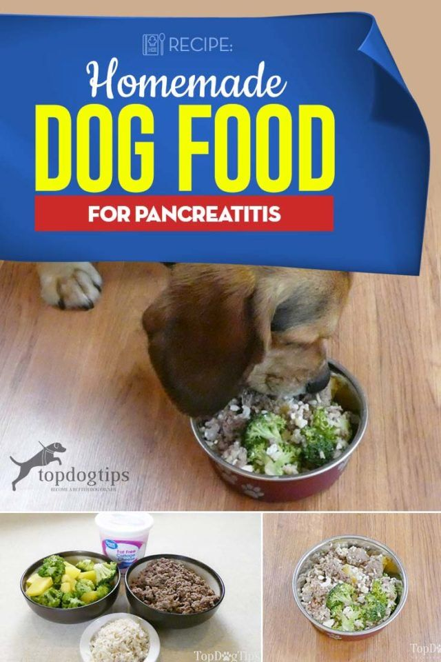 Recipe Homemade Dog Food For Pancreatitis Homemade Dog Food