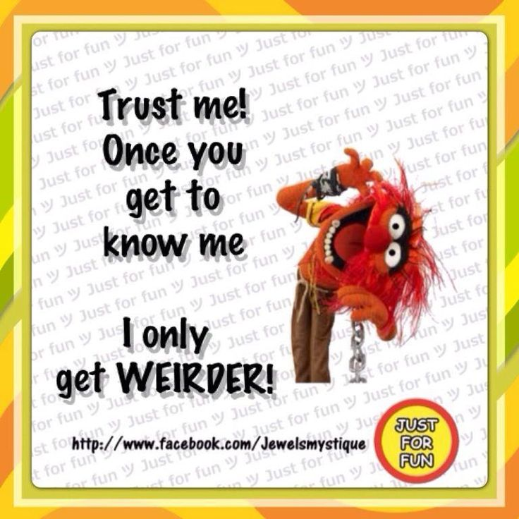 48 Best Animal (muppet ) Quotes Images On Pinterest