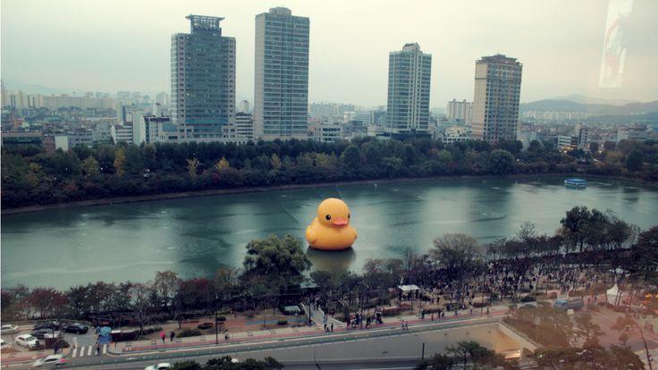 The Giant Duck is in Seoul, Korea!  https://www.youtube.com/KoreaJunkiesTV