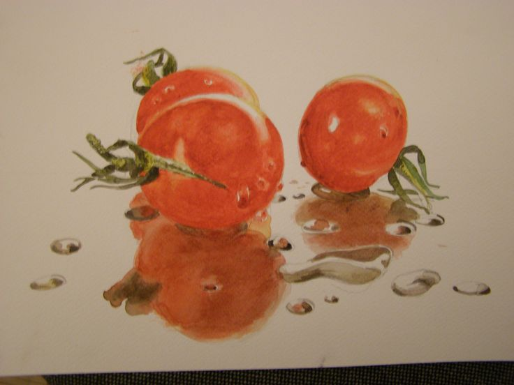 wet tomatoes- watercolour