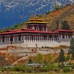Bhutan zet in op 100% biologische landbouw als onderdeel van nationale welzijn | HappyNews | Positief Nieuws