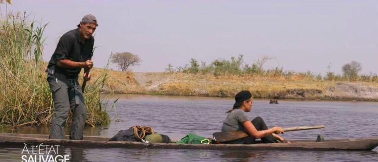 Extraits A l'Etat sauvage (M6) : Laure Manaudou panique face aux hippopotames, toutes les vidéos avec Télé-Loisirs