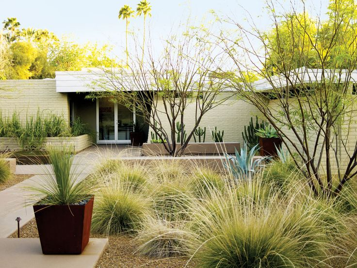 Ideas for drought tolerant landscape