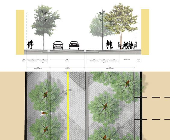 Landscape Architecture Canada Pedestrian Street Road Sections