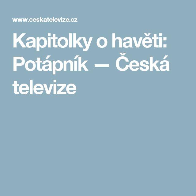 Kapitolky o havěti: Potápník — Česká televize