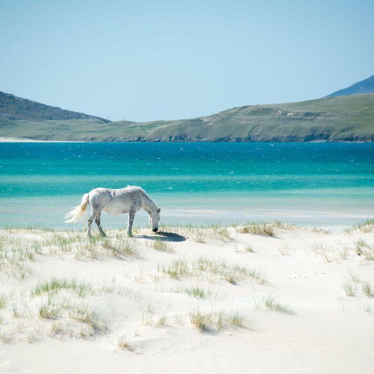 Luskentyre Beach, Isle of Harris. #isleofharris #outerhebrides #luskentyre…