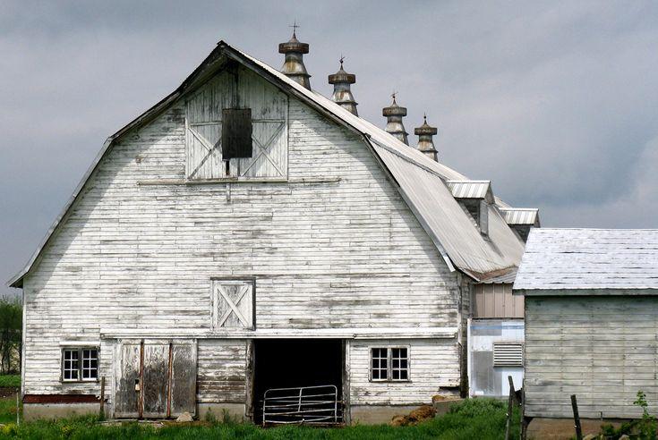 Hadley barn | Hadley, Massachusetts | ScribeGirl | Flickr