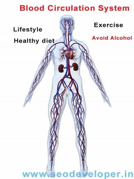 ★ Diet To Increase Blood Flow