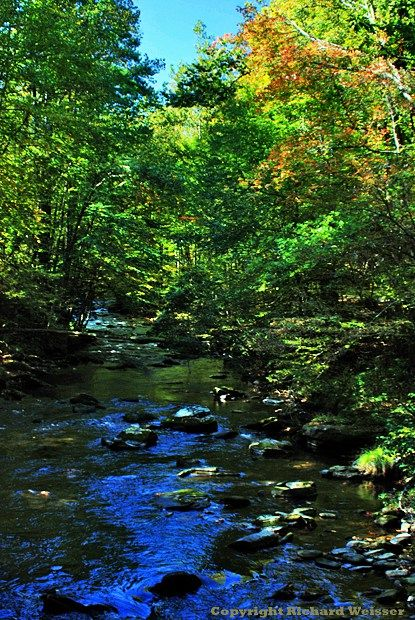 1504 best smokies images on pinterest cades cove east for Privately owned cabins in the smoky mountains