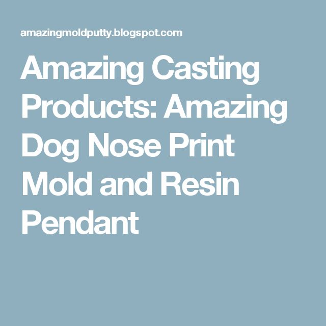Amazing Casting Products: Amazing Dog Nose Print Mold and Resin Pendant