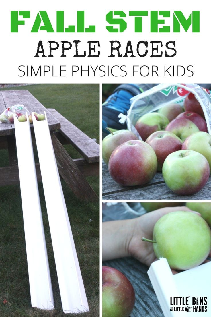 Apple Gravity Experiment for Preschool Physics