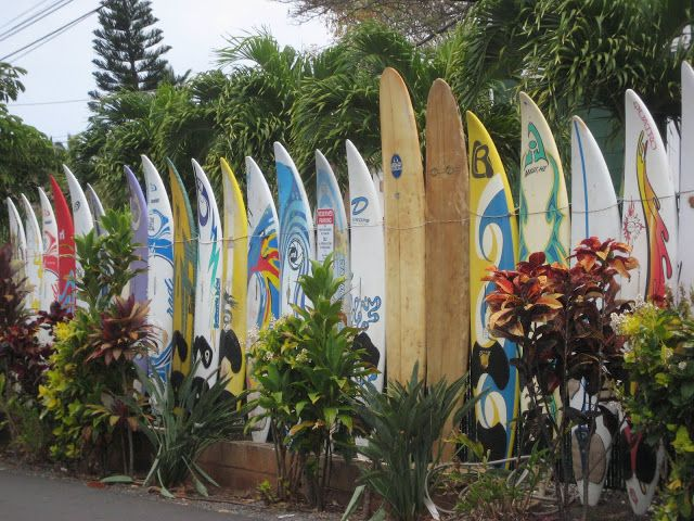 maui surf boards in Paia