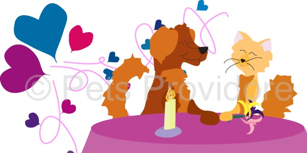 Tonic and Soda have a lovely evening planned for Valentine's day tomorrow and are send out their hugs and kisses to all the furbabies in the world