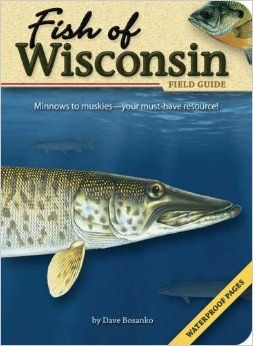 162 best fisheries books images on pinterest books fishing and fish of wisconsin field guide dave bosanko 9781591931942 amazon books sciox Choice Image